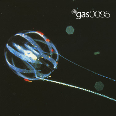Gas 0095