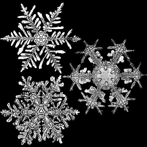 snowflakeswb2