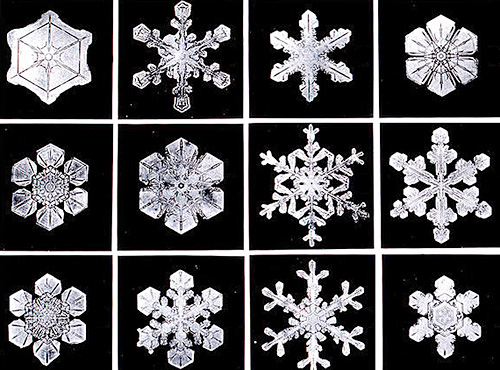 snowflakeswb3