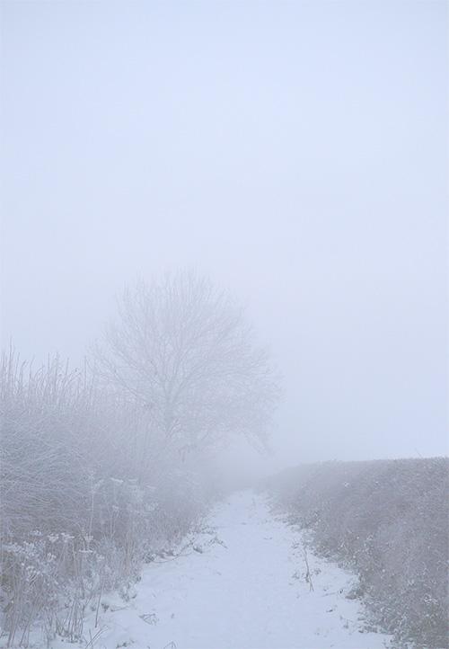 Snow Lane Mist